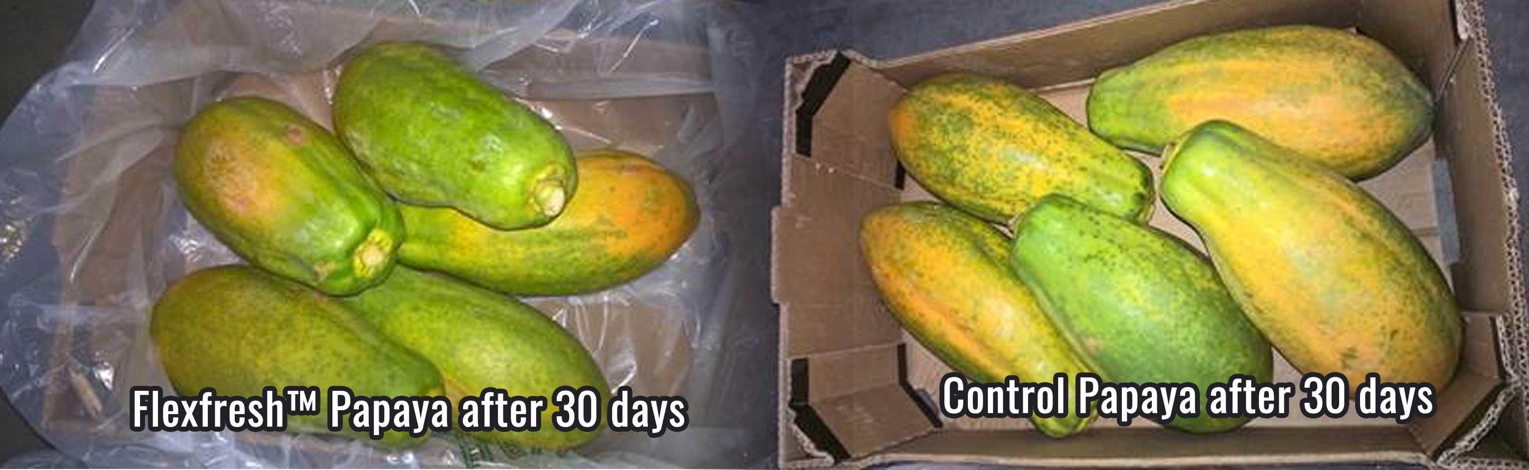 comparing papayas