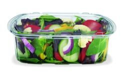 Placon_food packaging container