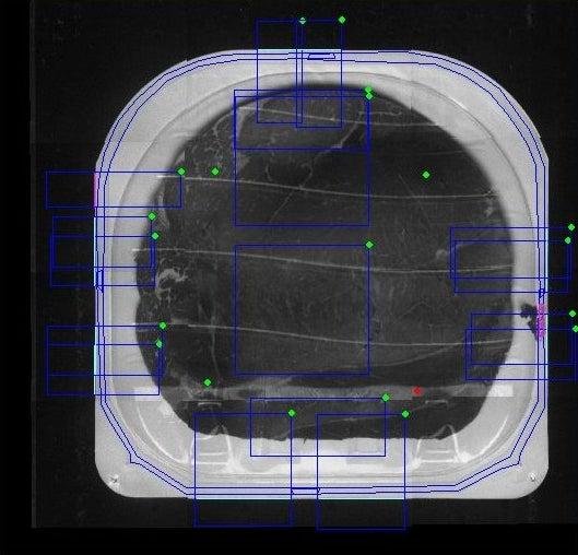 Multivac Vision System seal seam scanner